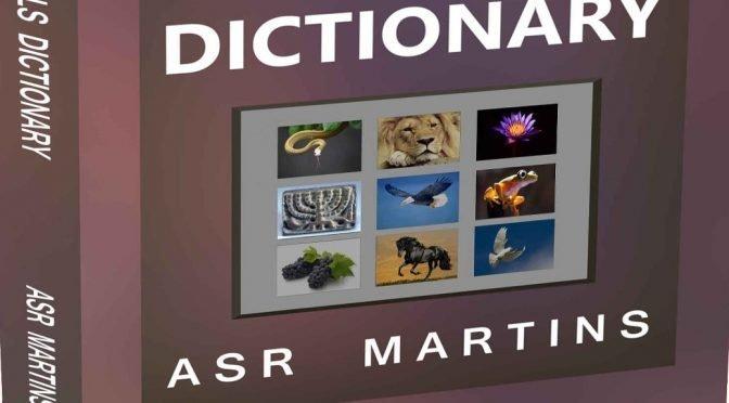 A Symbols Dreams And Visions Asr Martins Publishing