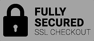 Fully secured checkout